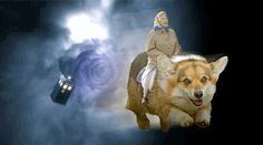 And The Queen riding a corgi through time and space. | 25 Extremely British GIFs