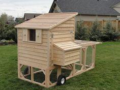 chicken tractor | CO Chicken Coops