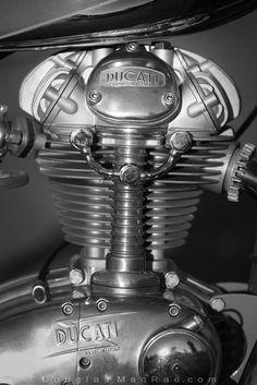 1962 Ducati Elite 200ss motor ©Douglas MacRae