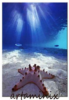 In fondo al mar #sea #stellamarina #star #love #nature #paint #arte #artaminix #blue