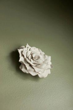 Wall flower 5-7