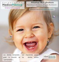 Los dientes de leche son los precursores de los dientes definitivos    ¡Visítanos!    http://medicoplastica.com/odontologia/