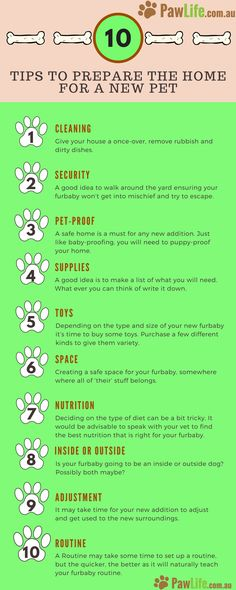 Here are a few practical, yet essential tips to prepare the home for a new pet. These tips are not just for a new puppy; they can be useful for a rescue puppy or adult dog.