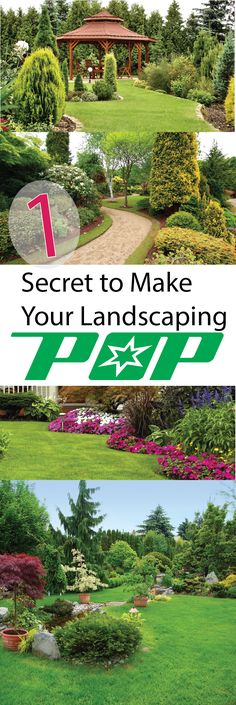 1 Simple Thing That Makes Your Landscape Pop – Making DIY Fun