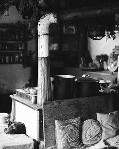 Ramounat - 2011  #pentax #spotmatic #argentique #noiretblanc #blackandwhite #tmax #film #filmphotography #filmisnotdead #tmax400 #kodak #35mm #35mmfilm #analogphotography #analogcamera #filmcamera #analoguephotography #kodak_photo #istillshootfilm #analoguevibes #analogue #communauté #wwoof #wwoofing #analoguelove #thefilmcommunity #garanceli #staybrokeshootfilm #shootfilm #shootfilmnotmegapixels