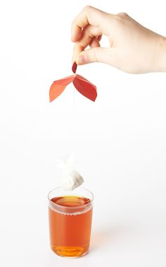 T  |  gorgeous tea packaging concept by Maria Milagros Rodriguez Bouroncle, student.