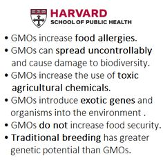 Harvard School of Public Health has identified multiple issues with GMOs.  http://chge.med.harvard.edu/topic/genetically-modified-foods