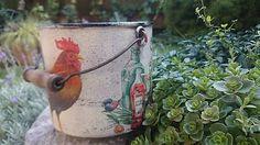 kreatiwik / Kohútik jarabý nechoď do záhrady