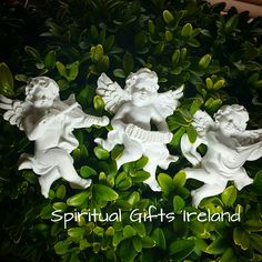 These little White Angel magnets arrived in today. If your stuck for space but need some angel sparkle in your life,these magnets are for you. 3 types to chose from. Which one is your favourite? Shop now: www.spiritualgiftsireland.com   Follow us on : www.facebook.com/spiritualgiftsireland  www.instagram.com/spiritualgiftsireland  www.etsy.com/shop/spiritualgiftireland