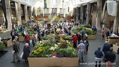 2017 Specialist Plant Fairs, Festivals, Sales and Swaps