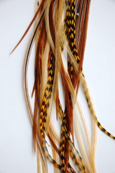 How To Attach Feather Extensions To Your Hair Feather Extensions, Hair Extensions, Feathered Hairstyles, Cool Hairstyles, Feather Hair Clips, Hair Feathers, New Hair Trends, Hair Art, Hair And Nails