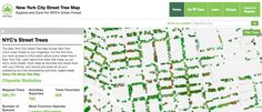 Gallery of New York City Mapped All of its Trees and Calculated the Economic Benefits of Every Single One - 1