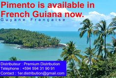 Pimento is available in French Guiana now (Guyane Française) Ginger Beer, Non Alcoholic, French, World, Outdoor, The World, Outdoors, French People, Alcohol Free