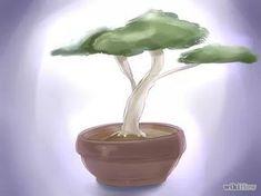 Image intitulée Start a Bonsai Tree Step 10
