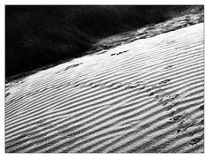 dune - baie d'Audierne - Bretagne