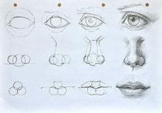 How to draw a face step by step by Jennifer Mckinley