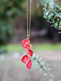 Collier pétale de rose Rose bijoux véritable rose par LiorasJewelry