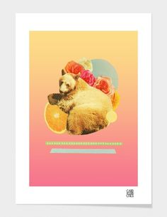 """""""In the Warm July Sun"""" - Numbered Art Print by laura redburn on Curioos"""