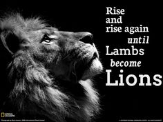 rise and rise again until lambs become lions - Google zoeken
