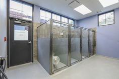 Clinic Interior Design, Clinic Design, Hospital Design, Pet Hospital, Building Design Plan, Exposed Ceilings, Vet Clinics, Metal Buildings, Unique Lighting