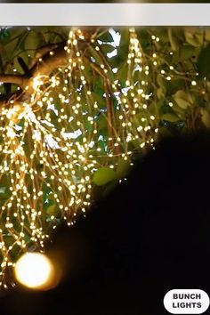 Our Firefly Bunch Lights have a flexible, bendable wire with warm white micro LEDs so you can create magical lighted designs. Simply shape, bend and twist them however you like – the lights can be used bundled or separate the individual strings to Outdoor Christmas, Christmas Lights, Christmas Crafts, Christmas Wrapping, Xmas, Christmas Holiday, Christmas Trees, Country Christmas, Christmas Christmas