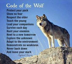 For this reason, the maximum sizeable step in their education is socialization from a younger age, similar to all dogs, in particular in households with quite a few friends who regularly come over. David Wolfe, Lone Wolf Quotes, Wolf Artwork, Never Back Down, Warrior Spirit, Warrior Quotes, Wolf Spirit, Wolf Stuff, Call Of The Wild