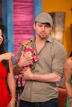 """Channing Tatum and his dog Honey attend Univision's morning show """"Despierta America"""" on June 24, 2013."""