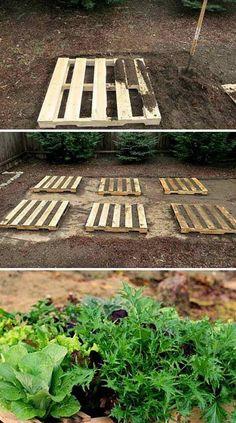 Skvělé nápady využití starých palet: Stačí pár hodin a takto si můžete vylepšit zahradu i vy! - Strana 2 z 2 - EZY - Víme jak