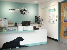 Molecare Veterinary Practice Reception Area