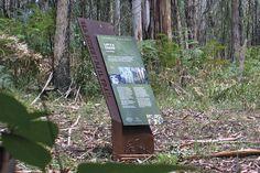 Beechy Rail Trail