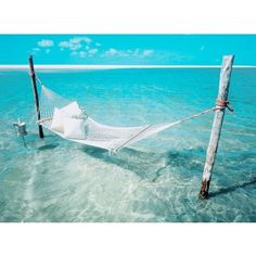 hammock daydreaming
