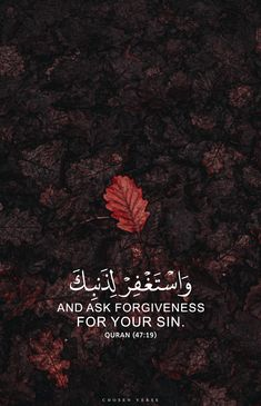 Best Quran Quotes, Hadith Quotes, Quran Quotes Inspirational, Ali Quotes, Arabic Quotes, Islamic Qoutes, Islamic Messages, Beautiful Quotes About Allah, Beautiful Islamic Quotes