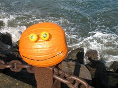 "Rupert Pumpkin spotted by the San Francisco Bay ""Unchain My Heart"""