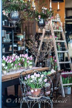 10 ways how to arrange your tulips Little Flowers, Cut Flowers, Florist Shop Interior, Flower Shop Interiors, Flower Shop Design, Flower Market, Flower Shops, Garden Nursery, Garden Shop