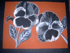 Perfect Pansies. Black and White Charcoal Pencil Drawing. Senior Year 2003-2004.