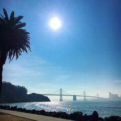 Bye San Francisco! 👋🏻 Obrigada Fred @dingotours por nos mostrar cada canto dessa cidade incrível!! Fica a dica para quem vier pra cá ou Napa e quiser conhecer tudo! #sfo #california Next stop.. ✈️✈️