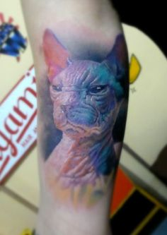 3d-cat-colorful-tattoo