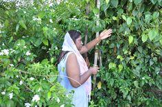 Rambert Village, Trinidad