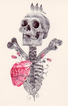 Ballpoint Pen Drawings by Paul Alexander Thornton (skull drawings link) Ballpoint Pen Drawing, Sugar Skull Tattoos, Sugar Skulls, Flower Skull, Skull And Bones, Memento Mori, Skull Art, Macabre, Dark Art