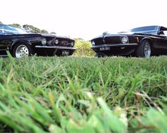 Mustangs in Black 1967 GT Convertible and 1970 Boss Fastback Ford Mustangs.