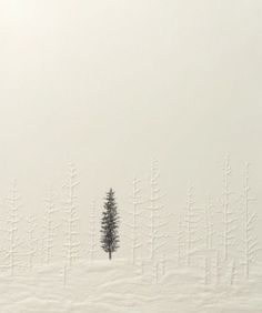 "phonem: "" Silent Forest (single tree), 2011 by Kyla Cresswell Embossing with pencil """