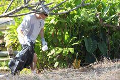 A Hawaiian Electric volunteer helping to pick up trash along a bike trail in Pearl City, Oahu. #community #volunteers #Hawaii