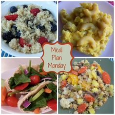 Meal Plan Monday: A Little Bit of Everything. MyPlant-Based Family