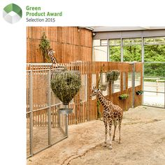 The Giraffe House, designed by the architects at Berlin-based dan pearlman, looks as if it's been part of the Isar wetlands for decades. Perfectly attuned to its surroundings, it is not only transparent but also open and bright. Sustainability also plays a major role. The central design principle involved eliminating the spatial boundaries between landscape and architecture as well as between visitors and animals.