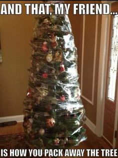 Bye bye christmas tree...this is exactly how my husband would pack up the tree if he had the choice!!