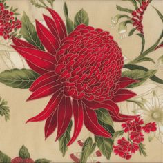 Australian Sun Waratah Wattle Native Flowers Beige Quilting Fabric - Find a Fabric.  Available to purchase in Fat Quarters, Half Metre, 3/4 Metre, 1 Metre and so on.