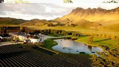 Taste your way through three significant wine regions on the Classic New Zealand Wine Trail. New Zealand Wine, New Zealand North, Best Vacation Destinations, Vacation Trips, Vacations, Napier New Zealand, In Vino Veritas, Wanderlust Travel, Wine Country