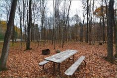 Murphys Point Provincial Park, Ontario, Canada Ontario Parks, Outdoor Furniture, Outdoor Decor, Canada, Backyard Furniture, Lawn Furniture, Outdoor Furniture Sets