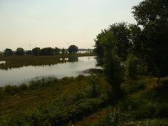 In de buurt van Lobelia, Huis ter Heide