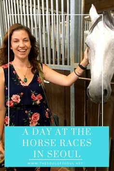 A Day at the Horse Races in Seoul, Korea. Horse races can be enjoyed in Gwacheon just outside of Seoul. A great place to spend the day betting on horses, eating and petting horses in the stables. What to do in Seoul.